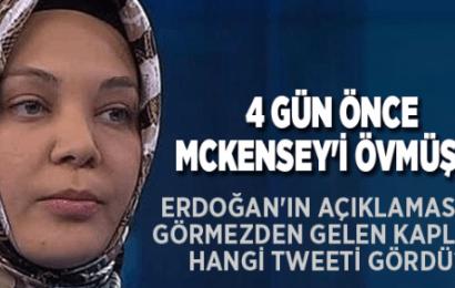 Erdoğan'ın Açıklamasını Görmezden Gelen Hilal Kaplan, Hangi Tweeti Gördü?