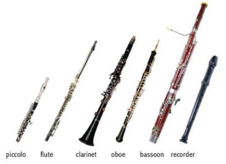 Flüt Çeşitleri ve Üflemeli Çalgılar